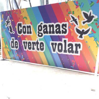 CON GANAS DE VERTE VOLAR